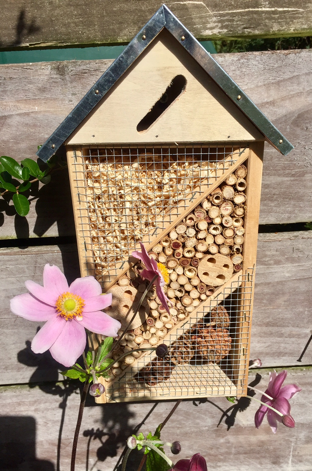 Insect And Bee House Irish Garden Birds