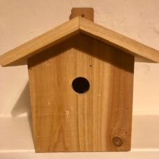 Wren & Blue Tit nest box