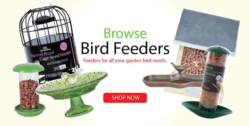 Irish-Garden-Birds-Bird-Feeders-Slider