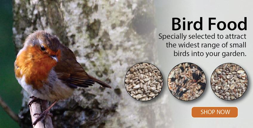 Irish-Garden-Birds-Robin-Bird-Food-Slider