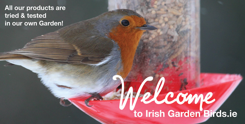 Irish-Garden-Birds Robin-Welcome-slider
