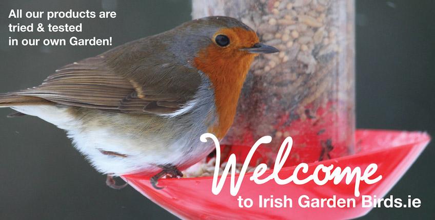 Irish-Garden-Birds Robin-Welcome-slider